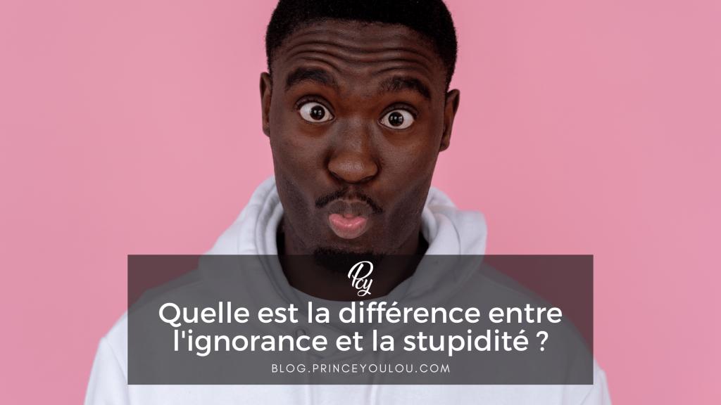 Quelle est la différence entre ignorant et stupide ?